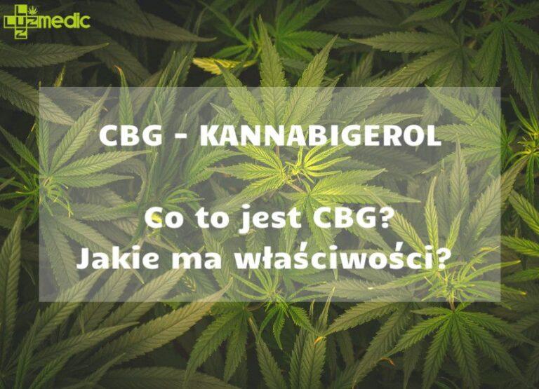 Olejek CBG oraz Susz CBG