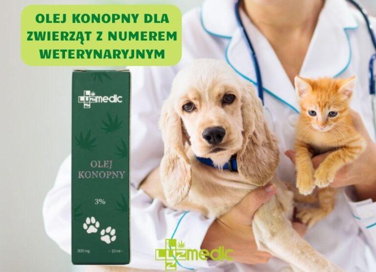 Olej CBD dla zwierząt z numerem weterynaryjnym od LUUZ MEDIC