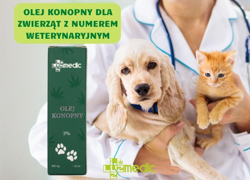 olej cbd dla zwierząt domowych z numerem weterynaryjnym