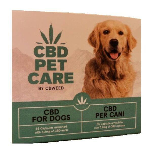 cbd pet care